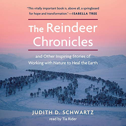 The Reindeer Chronicles cover art