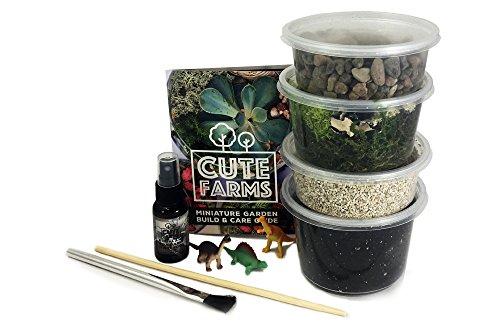Cute Farms Terrarium Starter Kit | Moss, Vermiculite, Soil, Pebbles, Plant Food & Finishing Tools (Medium Kit)
