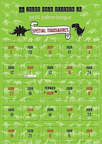 Adventskalender 25 DINOSAURES Kinder 2 – 10 Jahre – Kalender Jungen oder Mädchen, kleines Paläontoloque – 25 Tage auf Bildern – hergestellt in Frankreich