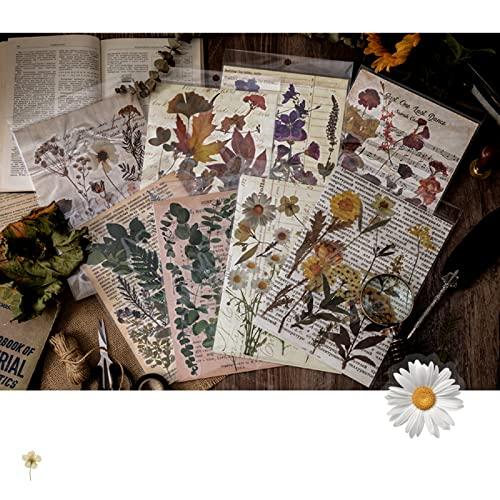 RisyPisy 80 Piezas Scrapbook Pegatina Set, Varias Plantas y Flores Creativas Pegatinas, PET Decorativas Stickers para...