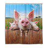 CPYang Duschvorhänge Funny Tier Schwein Blume Mohnblume Wasserdicht Schimmelresistent Bad Vorhang Badezimmer Home Decor 168 x 182 cm mit 12 Haken