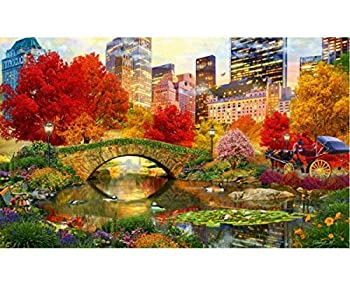 DIY 5D Diamond Painting Full Drilling Embroidery Rhinestone Paste DIY Painting Central Park New York City Cross Stitch Household A Living Room Bedroom Decoration Art