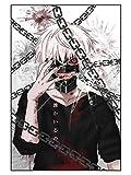 CoolChange Puzle de Tokyo Ghoul, 1000 Piezas, Tema: Ken & Ketten