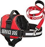 Service Dog Vest With Hook and Loop Straps &...