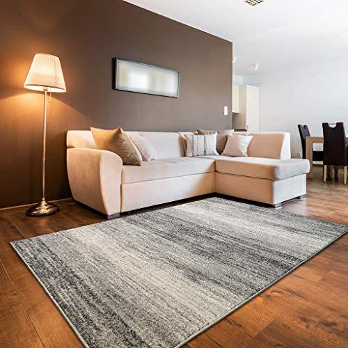 oKu-Tex Designer Teppich, Mercur, Wohnzimmerteppich, Webteppich, Modern & Zeitlos, Meliert, Verschiedene Muster, stilvoll & modern, Oeko-Tex Zertifiziert, Schadstofffrei, Polypropylen, 120 x 170 cm