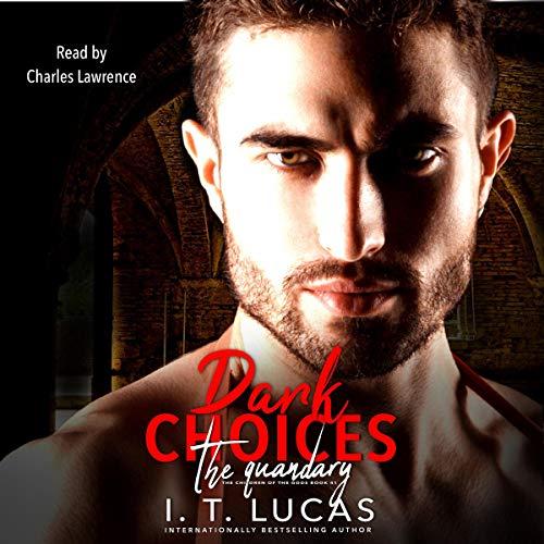 Dark Choices: The Quandary cover art