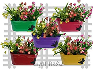 Royal Basket Butterfly Oval Railing Planters (Multicolor, Pack of 5)