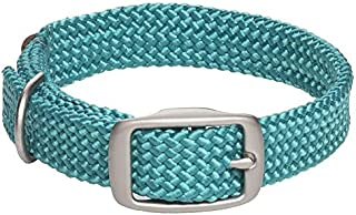 "Mendota Double Junior Collar, Teal, 9/16"" Up to 14"""