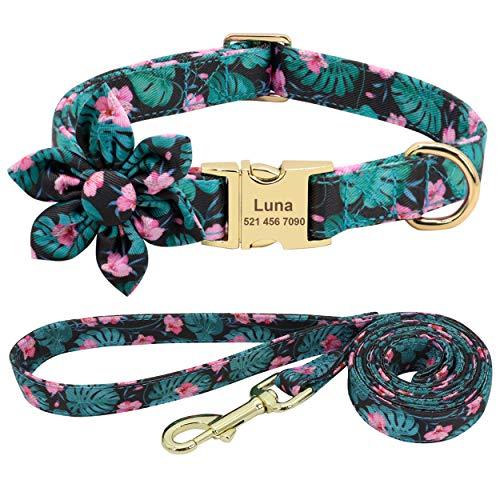 Beirui Juego de collar y correa para perro de niña de flores para perros femeninos, collares de mascotas grabados con hebilla dorada personalizada (patrón verde, XS)