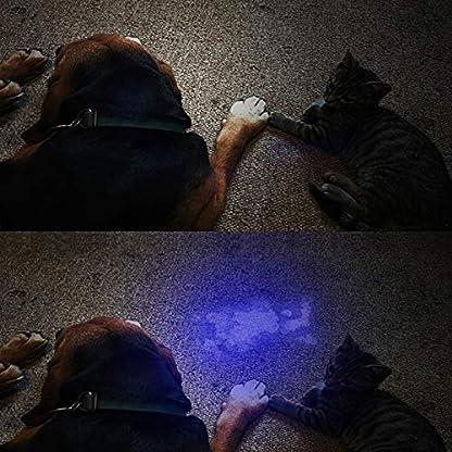 Vansky UV Torch 21 LEDs, UV Flashlight Black Light for Pet Urine Detection, Blacklight Detector for Dog Urine, Pet Stains, Bed Bug on Carpet/Rugs【3 x AAA Batteries Included】 5