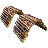 Hamster Bridge Rat Ladder Wooden Bridge Toy for Small Animals Cage Wood Ladder Natural Hideout for Guinea Pig Chinchilla Ferret Reptile (Pack of 2) (2ladder)
