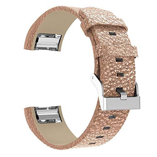 XIALEY Correa De Cuero Compatible con Fitbit Charge 2, Correas De Repuesto De Cuero Genuino Pulsera Mujer Hombre Muñequera Bandas con Hebilla De Metal Pulsera Ajustable para Charge 2,D