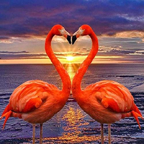 Flamingo 30 x 30 cm Diamond Art Kits Full Drill Crystal Strass Embroidery Paintings Pictures Arts Craft for Home Wall Decor DIY 5D Diamond Painting by Number Kits