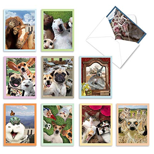 The Best Card Company - 10 Blank Animal Cards Boxed (4 x 5.12 Inch) - Assorted Pets, Zoo, Wildlife Cards for Kids - Animal Selfies M2373OCB