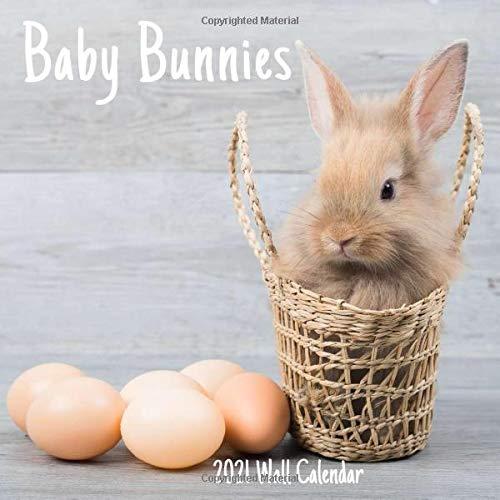 Baby Bunnies 2021 Wall Calendar: Baby Bunnies 2021 Calendar, 18 Months.
