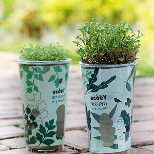 Kungfu Mall Mini Rouleau de Carbone en céramique pour Plantes en Pot, décoration de Bureau