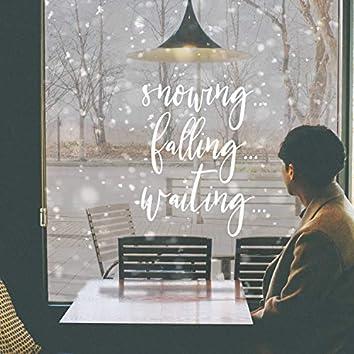 Snowing...Falling...Waiting...