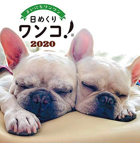 日めくりワンコ!2020年(卓上日めくりカレンダー犬版)