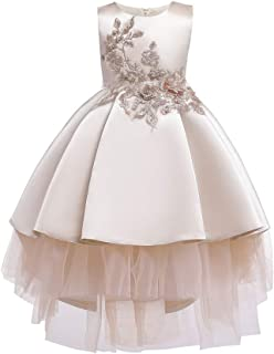 Kids Dress Princess Birthday Party Wedding Bridesmaid Communion Dance Ball Gown Pageant Maxi Dress 2-11 Years,Gold,8~9