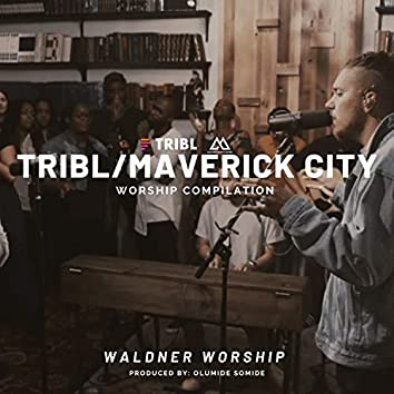 TRIBL COVER