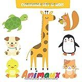 Coloriage dès 12 mois: Mon premier bloc de coloriage pour les tout-petits   Livre coloriage bébé animaux