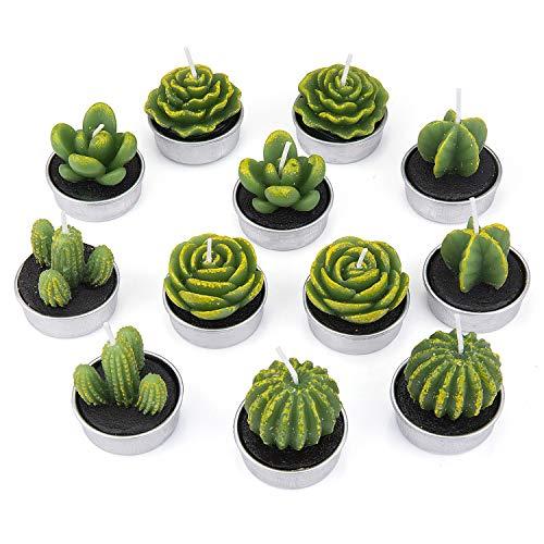 ZEWOO 12 Pcs Zart Kaktus-Kerzen, Dekorativ Handarbeit Zart Kaktus Teelicht Rauchlos Niedlich Grün Pflanze zum Valentinstag, Geburtstagsfeier oder Hochzeit