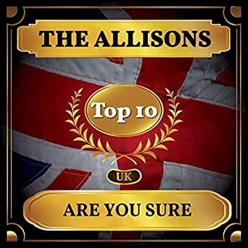 Are You Sure (UK Chart Top 40 - No. 2)