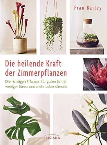 Die heilende Kraft der Zimmerpflanzen: Die richtigen Pflanzen für guten Schlaf, weniger Stress und mehr Lebensfreude - für frische Luft, eine schnelle ... Kopf, mehr Aufmerksamkeit und Mitgefühl