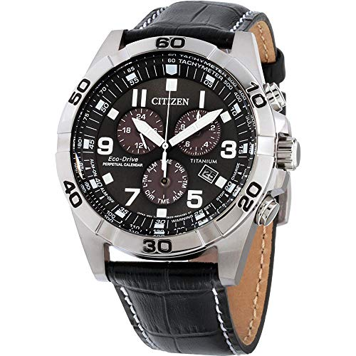 Citizen Watches BL5551-14H Eco-Drive Black One Siz