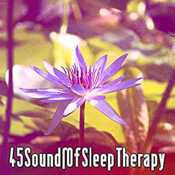45 Sounds Of Sleep Therapy