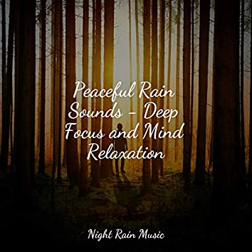 Peaceful Rain Sounds - Deep Focus and Mind Relaxation