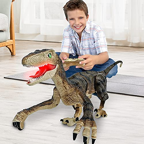 Remote Control Dinosaur Toys for Kids 2.4Ghz RC Dinosaur Robot Toys with Verisimilitude...