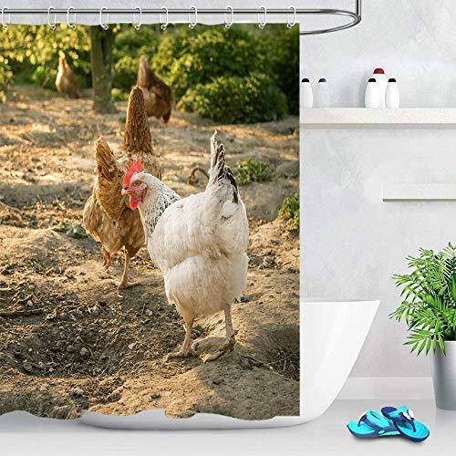 kglkb Duschvorhang,Polyester Wasserdicht Futtersuche Huhn Duschvorhang, Badezimmer Zubehör Set 180X180Cm