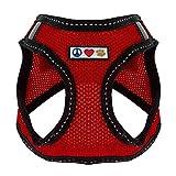 Pawtitas Pet Reflektierendes Hundegeschirr Geschirr zum Hineintreten oder Umlegen, Komfortsteuerung, Trainieren Sie den Spaziergang Ihres Welpen / Hundes - Medium Hundegeschirr Rot