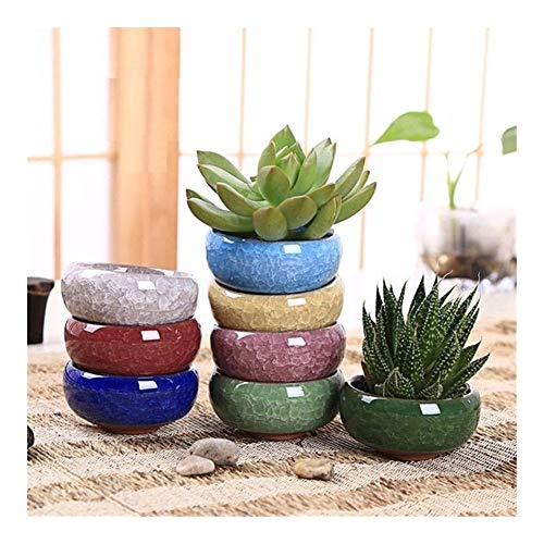 8 bonsai plant Binglie ceramic pots small pots home and garden decoration mini succulent pot (Color : Each Color)