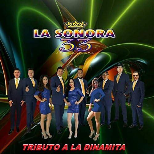 Sonora 33
