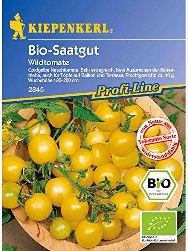 Wildtomate Golden Currant (Bio-Saatgut)