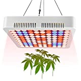 Aogled 1000W LED Grow Lights for Indoor Plants Full Spectrum,Panel Plant Lamp for Indoor Hydroponic,Greenhouse and Grow Tent,LED Growing Lamp for Seedling,Veg,Flower(80W LED Equivalent 1000W HPS/MH)