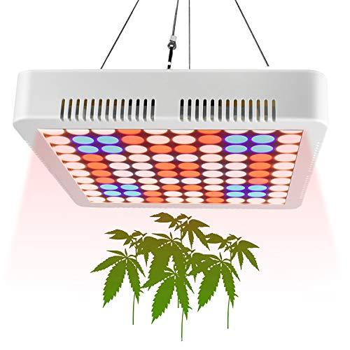 1000 watt lamp - 5