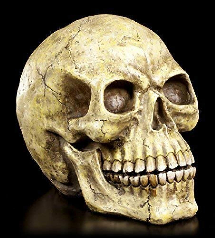 Totenkopf gro XXL - Schdel Figur Totenschdel Skull Deko