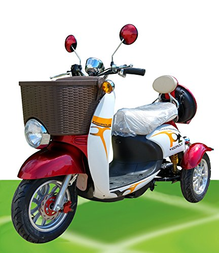 500W ElektroScooter Senioren ElektroMobil Mobility Vehicle Elektro Dreirad ZweiSitzer