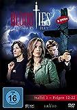 Blood Ties - Staffel 1, Folgen 12-22 [3 DVDs] - Christina Cox