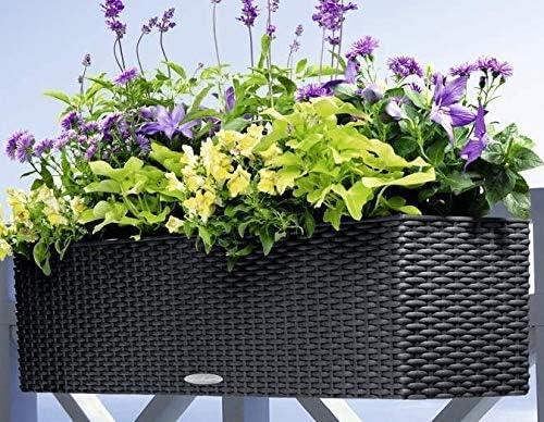 Will Veranda Garden ハンギングプランター50サイズ