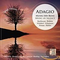 Adagio-Musik Der Ruhe Duchable/Harding/Rene & Gaut