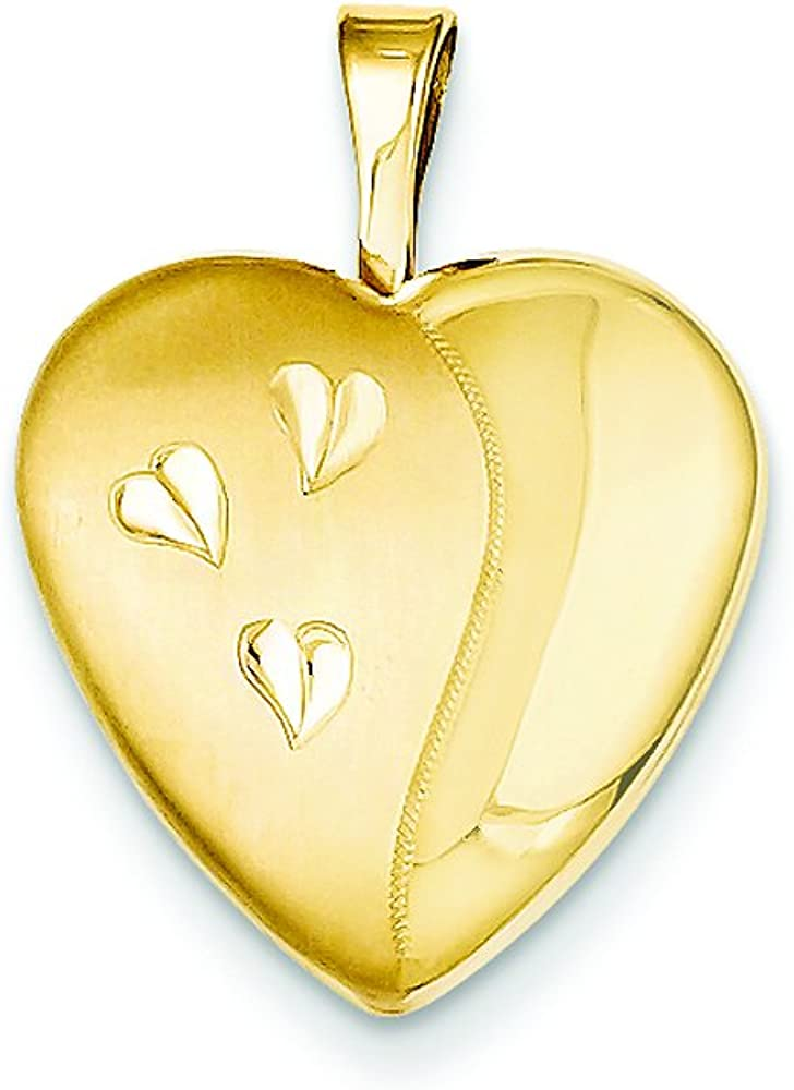 Finejewelers 1/20 Gold Filled 16mm Satin and Polished Heart Locket Necklace Chain Included