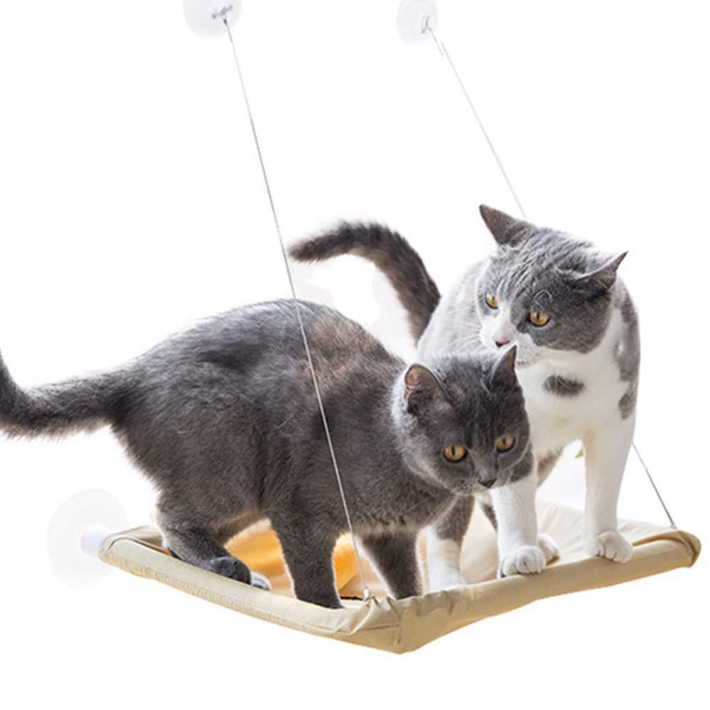 Crewell - Cama Colgante para Gatos, Hamaca con Ventosa, Hamaca para Cama o Percha de Cama, Asiento para Gatos, Regalo para Gatitos: Amazon.es: Hogar