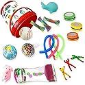 Boaz 18-Pieces Fidget Box Stress Relief Toys