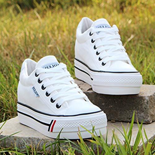 DQS Sneakers con Plateau da Donna Scarpe Casual con Zeppa da Donna Scarpe da Ginnastica Traspiranti Sneakers da Donna Scarpe in Rete da Donna
