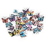 LANCHEN 30 Piezas con Forma de Mariposa, alfileres Decorativos de Pared Fija, chincheta, Bricolaje, Escuela