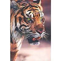 1000ピースのパズル、虎の視線、大人と子供のための家族の装飾パズルDIY